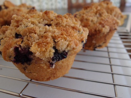 Blueberry muffin experimentation