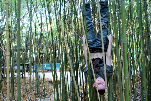 Silas in bamboo, upside down_5339