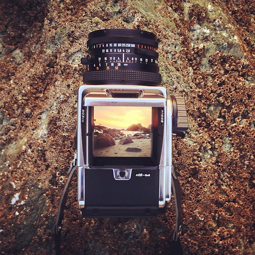@sonyayu's beautiful Hasselblad #ThingsiWant