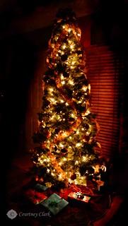 "13. ""Christmas Tree"""