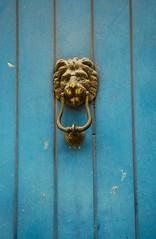 door lion