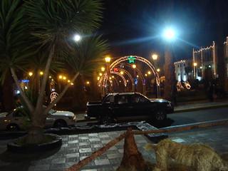 navidad 2012 04