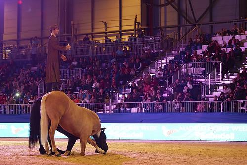 Madrid Horse Week Banco Sabadell (Diciembre 2012)