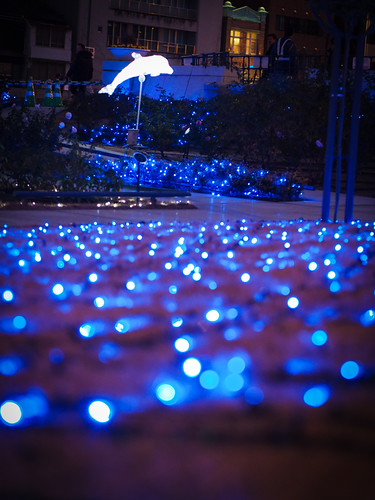 Blue lights at Nakanoshima Park