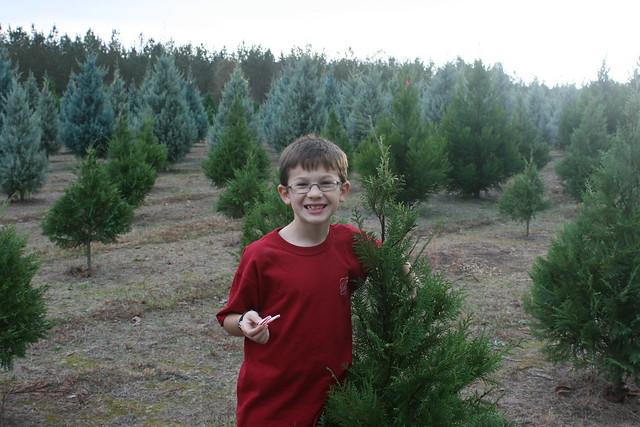 ChristmasTreeShopping2012 - 28