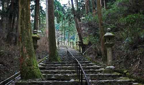Sigue el camino de lamparas de piedra