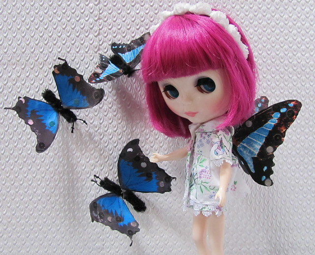 BaD Feb 17 -  Butterflies