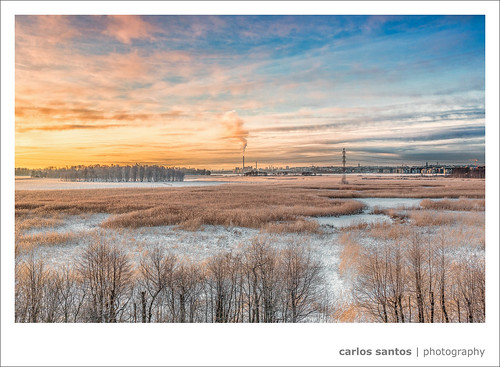 trees winter snow ice sunrise finland helsinki swamp fields talvi canon5dmarkiii mygearandme mygearandmepremium mygearandmebronze mygearandmesilver mygearandmegold grury flickrsfinestimages1