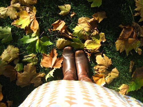 Smithfield Park - October