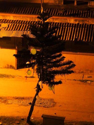 christmas street xmas india night balloons weihnachten evening abend navidad december bangalore tags noel neighborhood avond karnataka sai weihnacht alternative ashish 2012 kerst ballonnen buurt brindavan nöel alternatief bengaluru kerstdagen kadugodi neighbourbod