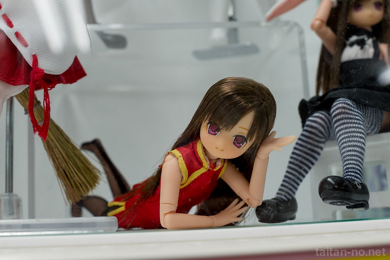 AZONE_LS_Akihabara_20130105-DSC_9850