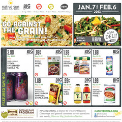 January 2013 Sales Flyer