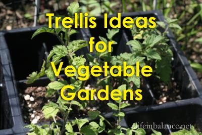 Trellis Ideas for Vegetable Gardens
