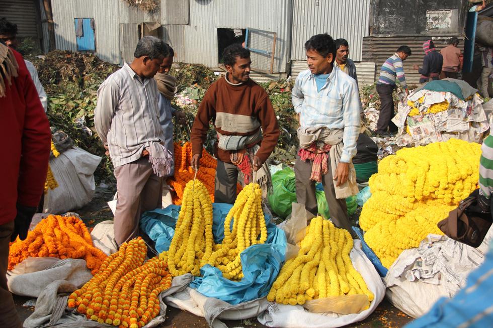 Marigold vendors at the market