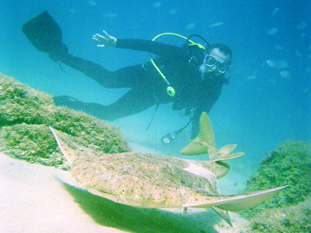 Diving with Sand Shark, Lanzarote