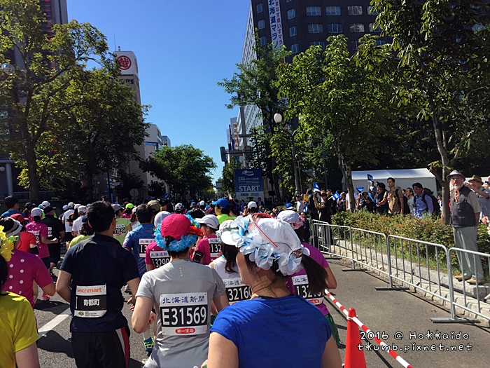 2016北海道馬歡樂組15.JPG