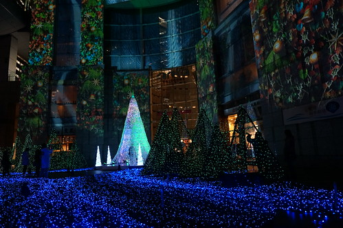Forest of Lumie  @caretta SHIODOME