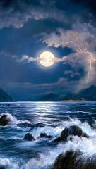 月のリズムと身体