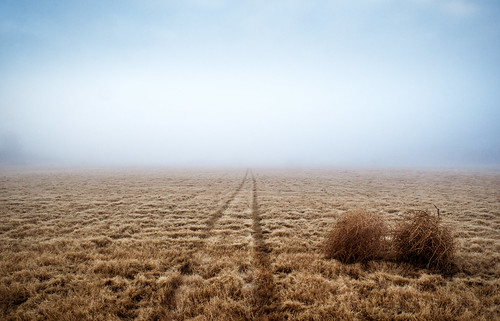 world blue sky grass fog composition point landscape dead photography high haze day sony horizon iso marks edge end brock f56 simple 16mm vanishing 800 rule f28 utopia tumbleweed highiso thirds whittaker nex simplistic reddit sonynexc3
