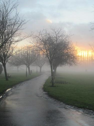 sun mist sunrise dawn kingspark dalkeith midlothian