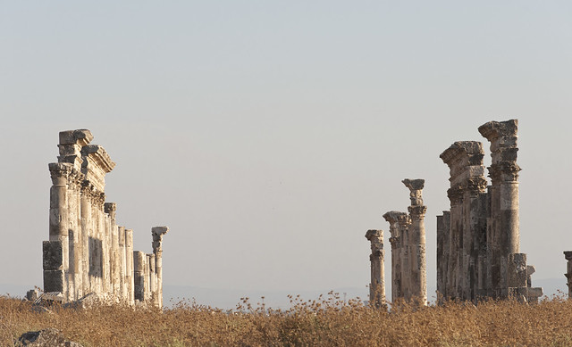 Apamea XX. Toward Emesa