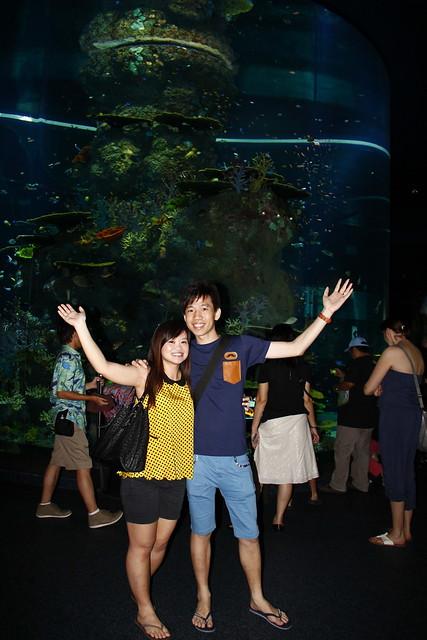 RWS S.E.A Aquarium 491