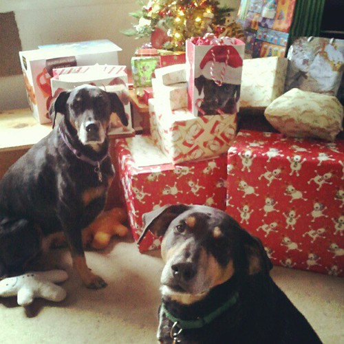 "Lola & Tut... ""Let's get this unwrapping party started!"""