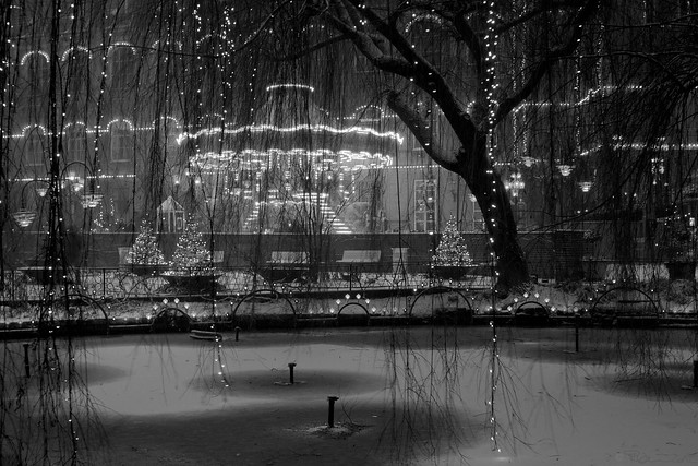 land of light and christmas magic (BW)