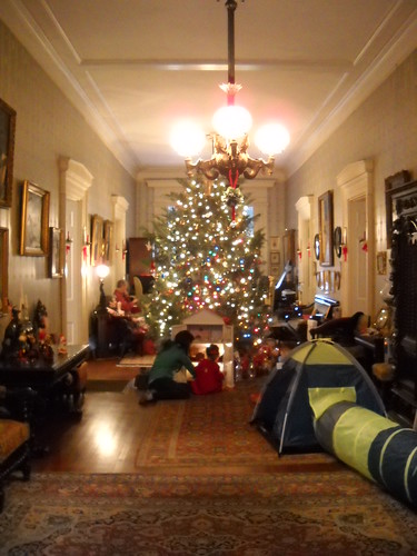 Lansdowne Christmas by Janis Gore