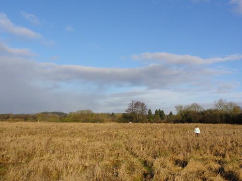 Dodgy Field
