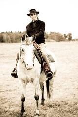 animal sports, equestrianism, western riding, stallion, equestrian sport, rein, bridle, horse, cowboy,