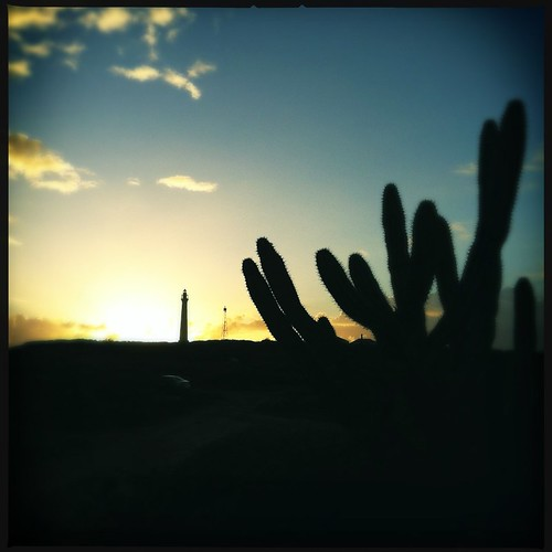 morning cactus lighthouse sunrise aruba caribbean iphone4 hipstamatic