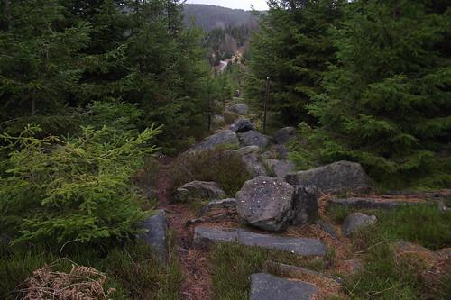 chemin des bornes 017