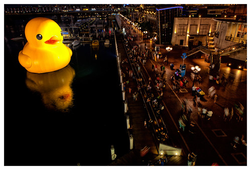 Rubber Duck in Darling Harbour, Sydney