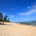Beach - Praia do Forte, Bahia, Brazil