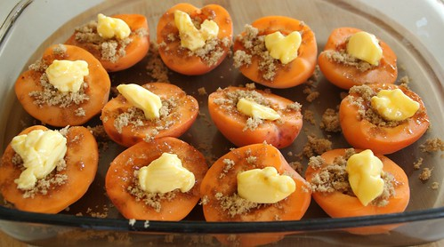 Roasted Apricot Gelato 1