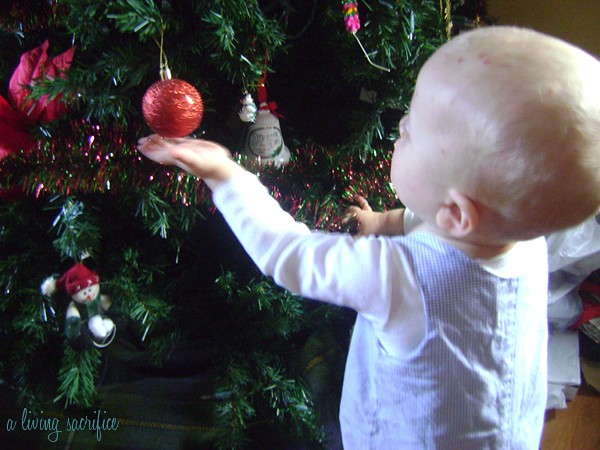 judah touching tree