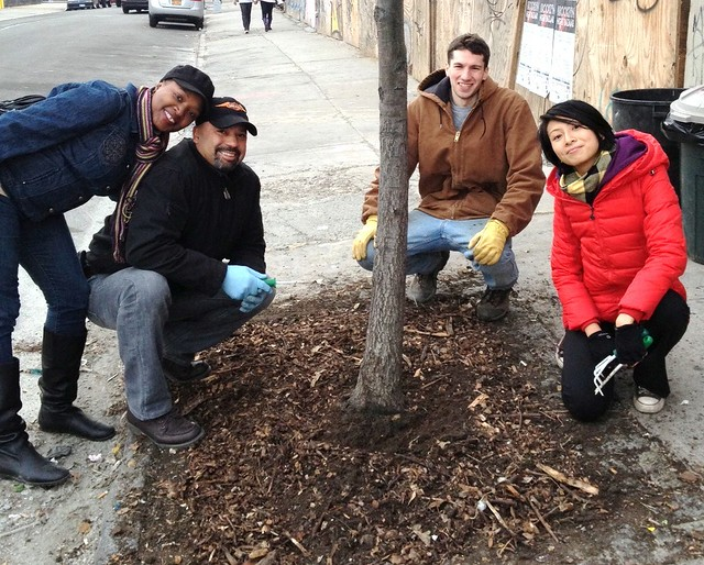 Bushwick Tree Stewards