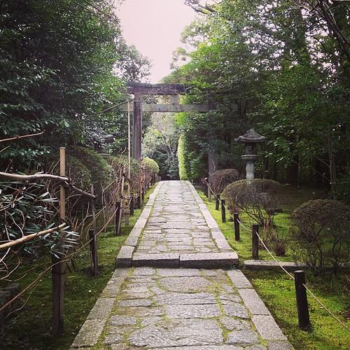 金地院 東照宮への道