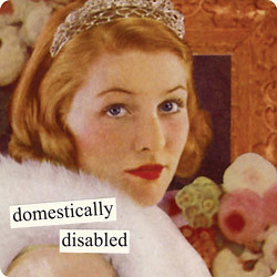 magnets-domestically-disabled