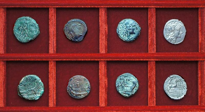 RRC 247 P.CALP Calpurnia bronzes, RRC 248 L. MINVCIV Minucia quadrans, RRC 249 P.MAE.ANT Antestia denarius, Ahala collection, coins of the Roman Republic