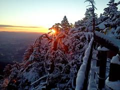 Sunrise 12.14.12