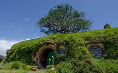 Take a trip to Hobbiton!