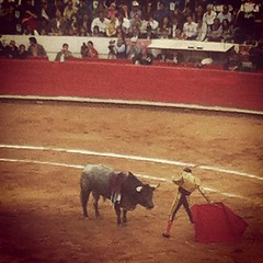 event(0.0), performance(0.0), animal sports(1.0), cattle-like mammal(1.0), bull(1.0), tradition(1.0), sports(1.0), bullring(1.0), performing arts(1.0), entertainment(1.0), matador(1.0), bullfighting(1.0),