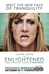 Enlightened poster