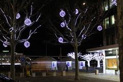 Christmas Decoration in Geneva - 2012