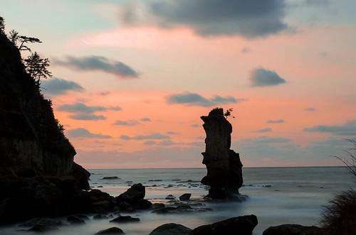 sunset tree japan pine landscape island ngc 松島 日本海 allxpressus 大田市 02景色 掛戸松島