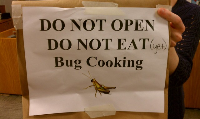 bug cooking