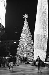 Christmas 2012 - Decor at ION