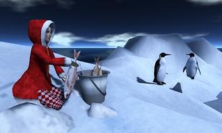 The North Pole Slight Ride Adventure - 01